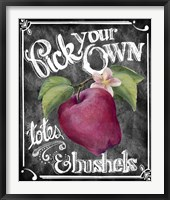 Pick Your Own Framed Print