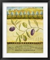 Olive Grove Puglia Framed Print
