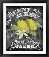 Framed Sunny Acres