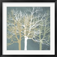 Framed Tranquil Trees