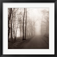 Framed Foggy Path