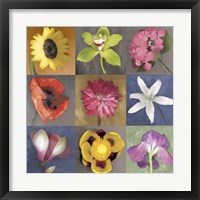 Flower Nine Framed Print