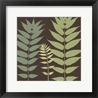 Field Botanical Framed Print
