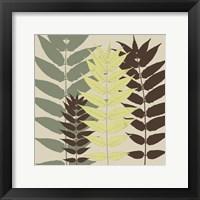 Garden Botanical Framed Print
