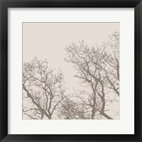 Majesty I (beige) Framed Print
