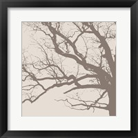 Majesty III  (beige) Framed Print