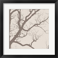 Majesty IV  (beige) Framed Print
