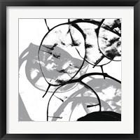 Silver Dollars V Framed Print
