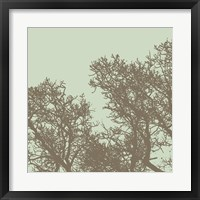 Winter Tree I Framed Print