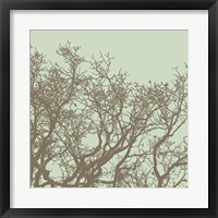 Winter Tree II Framed Print