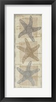 Star Fish Framed Print