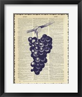 Grapes Framed Print