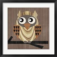Owl 1 Framed Print