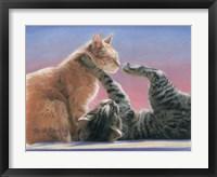 Framed Frolicing Cats