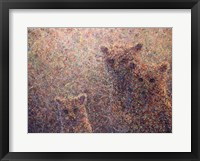 Framed 3 Bears