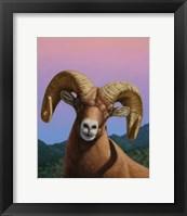 Framed Bighorn