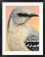 Framed Mocking Bird