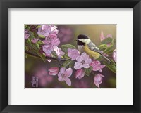 Framed Pretty in Pink - Chickadee