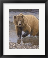 Framed Shore Patrol - Grizzly