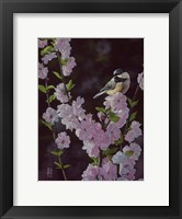 Framed Springtime Blossoms - Chickadee