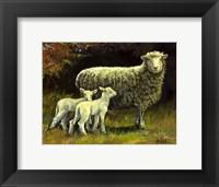Framed Mothers Day