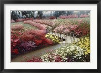 Framed Monet's Flower Garden