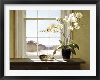 Framed Orchids In The Window 2