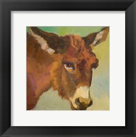 Bored Burro Framed Print