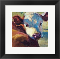 Hereford Honey Framed Print
