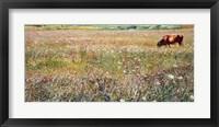 Framed Roman Countryside 1903