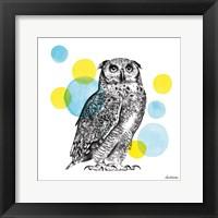Framed Sketchbook Lodge Owl