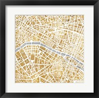 Framed Gilded Paris Map