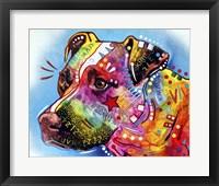 Framed Pit Bull 1059