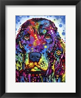 Framed Cocker Spaniel 2