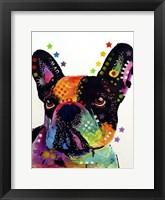 Framed French Bulldog 1