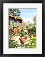 Framed Chicken And Hens