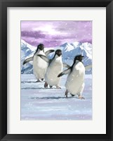 Framed Penguins
