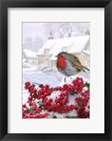 Framed Village Robin 1