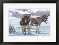Framed Donkey Pair