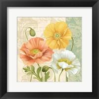 Framed Pastel Poppies Multi II
