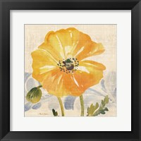 Watercolor Poppies VI Framed Print