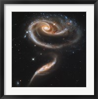 "Framed """"Rose"""" Made of Galaxies Highlights Hubble's 21st Anniversary"