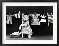 Framed Kitty Laundry