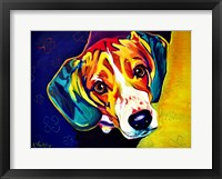 Framed Beagle Bailey