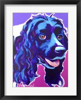 Framed Cocker Spaniel Dixie