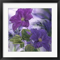 Purple Dream IV Framed Print