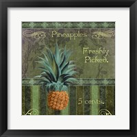 Fresh Pineapples Framed Print