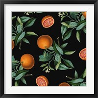 Nature's Bounty -  Oranges Framed Print
