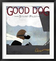 Framed Good Dog Stunt Pilot