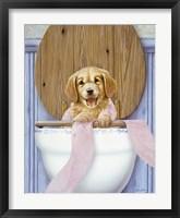 Framed Toilet Mischief
